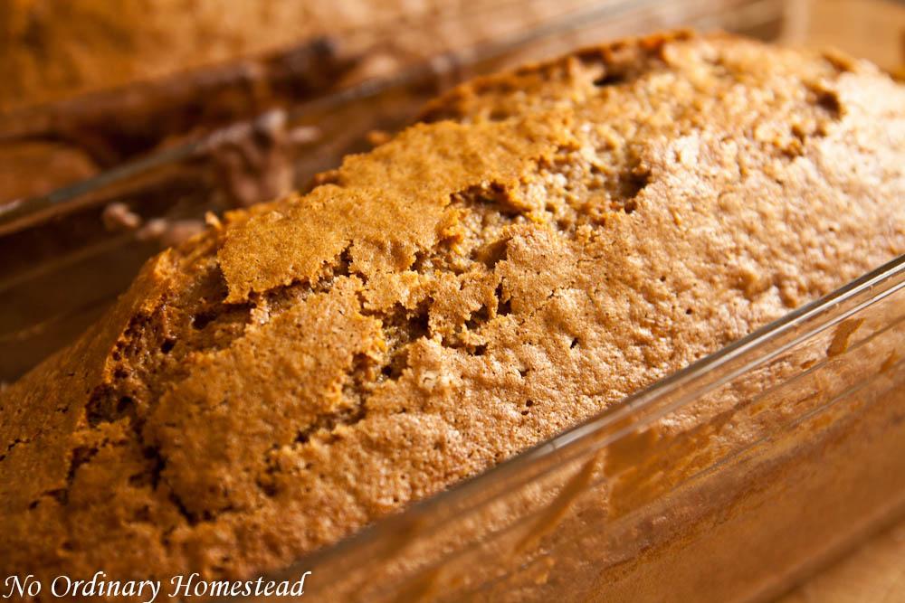 zucchini-bread-recipe-01