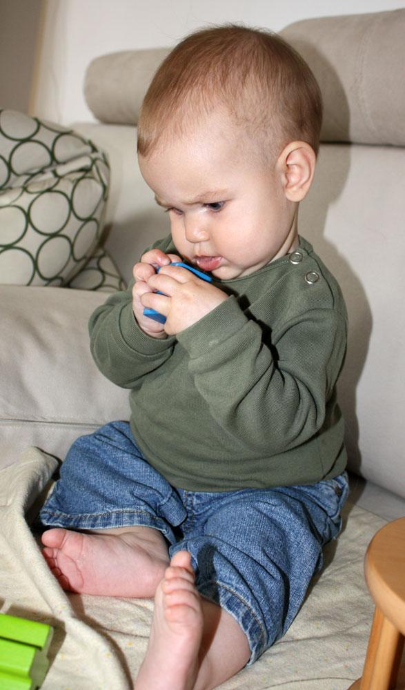 Mack 7 months old concentration