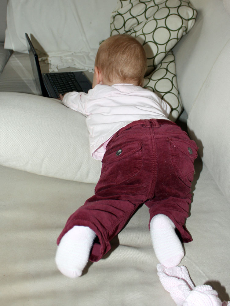 Mackenzie 8 months stealing laptops