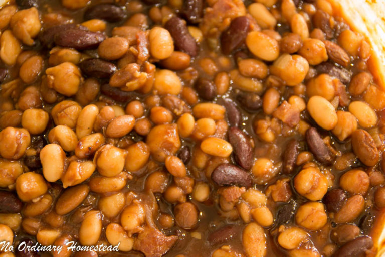 4 bean baked beans with bacon