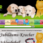 5 Sites to Keep You Out of the German Stores