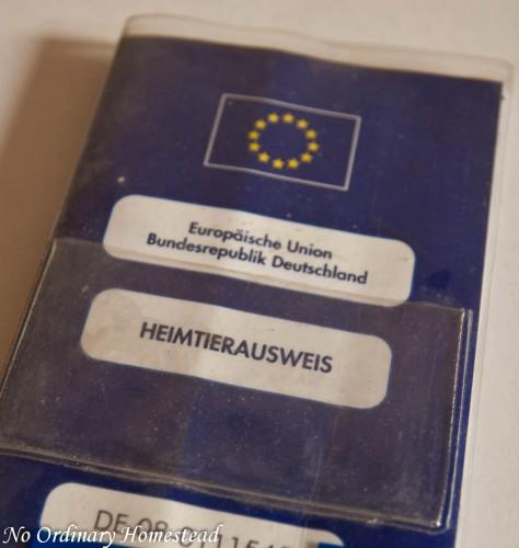 european pet passport