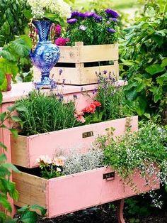 drawer-garden