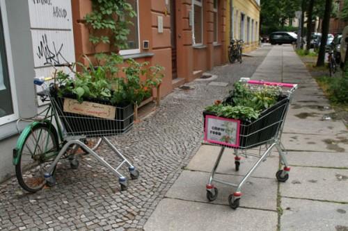 guerrilla gardening berlin