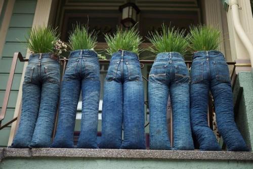 jeans-garden