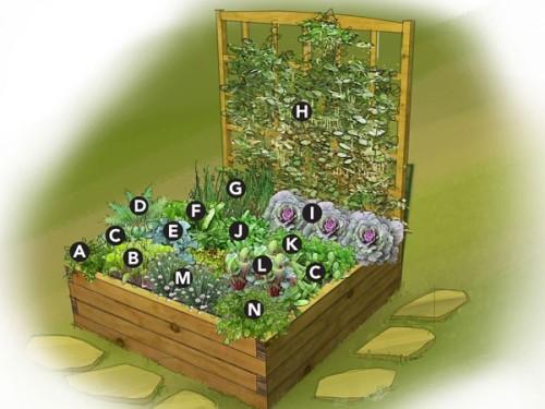 small-space-garden