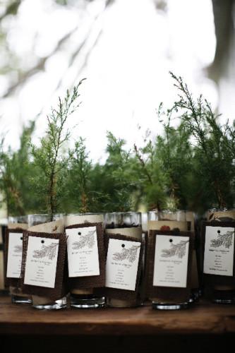 tree-wedding-favor