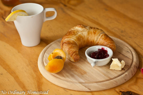 food-photography-tips-02