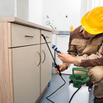 3 Questions to Ask Before Exterminators Visit Your Home