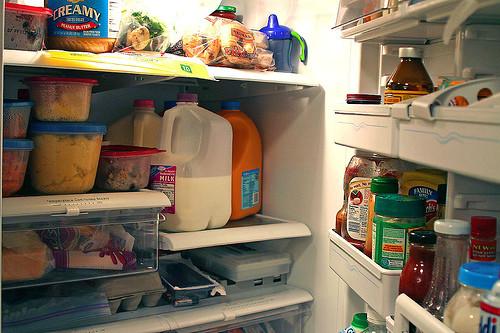fridge-full-interior