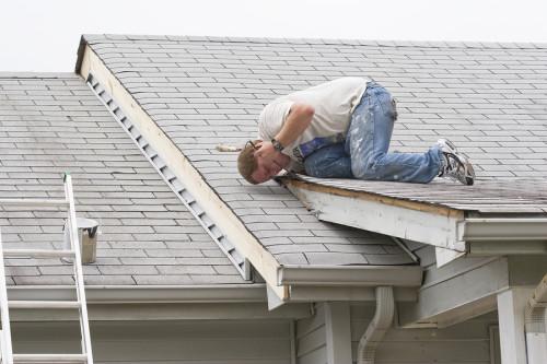 Roof Maintenance Contractor