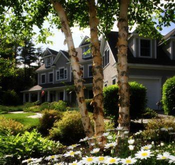nice-home-shaded