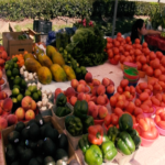 A Visit to the Pine Ridge Road Farmers' Market