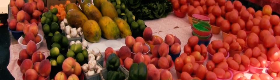 NOH-Pine-Ridge-Rd-Farmers-Market-03