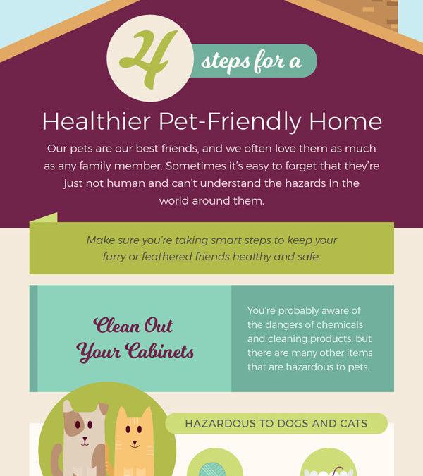 4 Steps for a Healthier Pet-Friendly Home