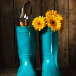 How to Groom Your Flower Garden