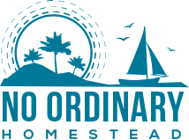 No Ordinary Homestead