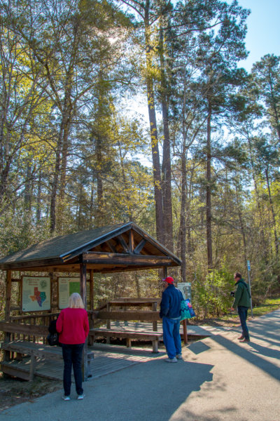 There Are Several Trails Throughout The State Park And We Selected A 1 Mile  Loop That Was A Nice Easy Stroll Through The Pineywoods Forest.