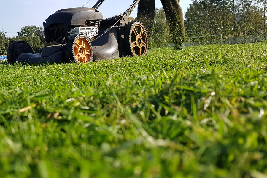 The Secret to Winterizing Your Lawn: Starting in Spring