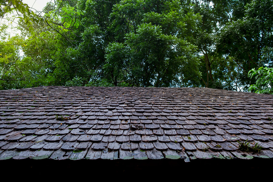 New Year, New Roof: 10 Signs It's Time to Replace