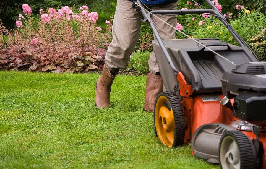 Home Improvement: 8 Ways To Improve Your Garden and Lawn