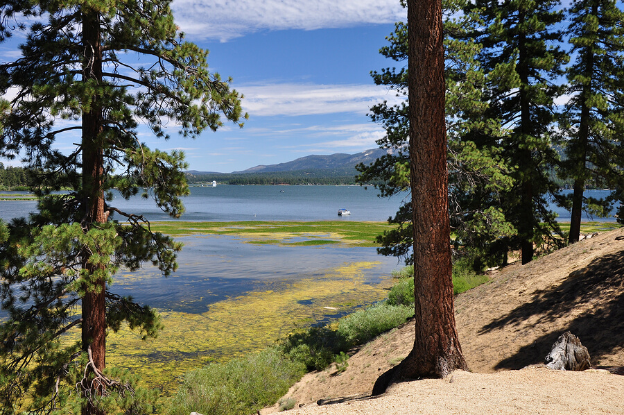 7 Fun Activities to Do While Vacationing in Big Bear Lake