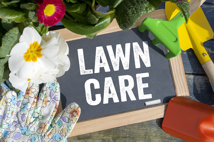 Simple Lawn Care Tips for Healthy, Green Grass