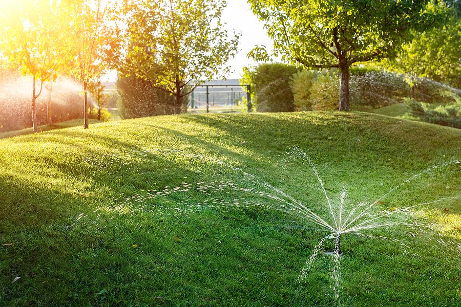 Why should you own a sprinkler timer?