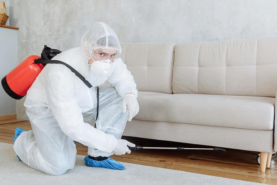 Choosing easily disinfected furniture